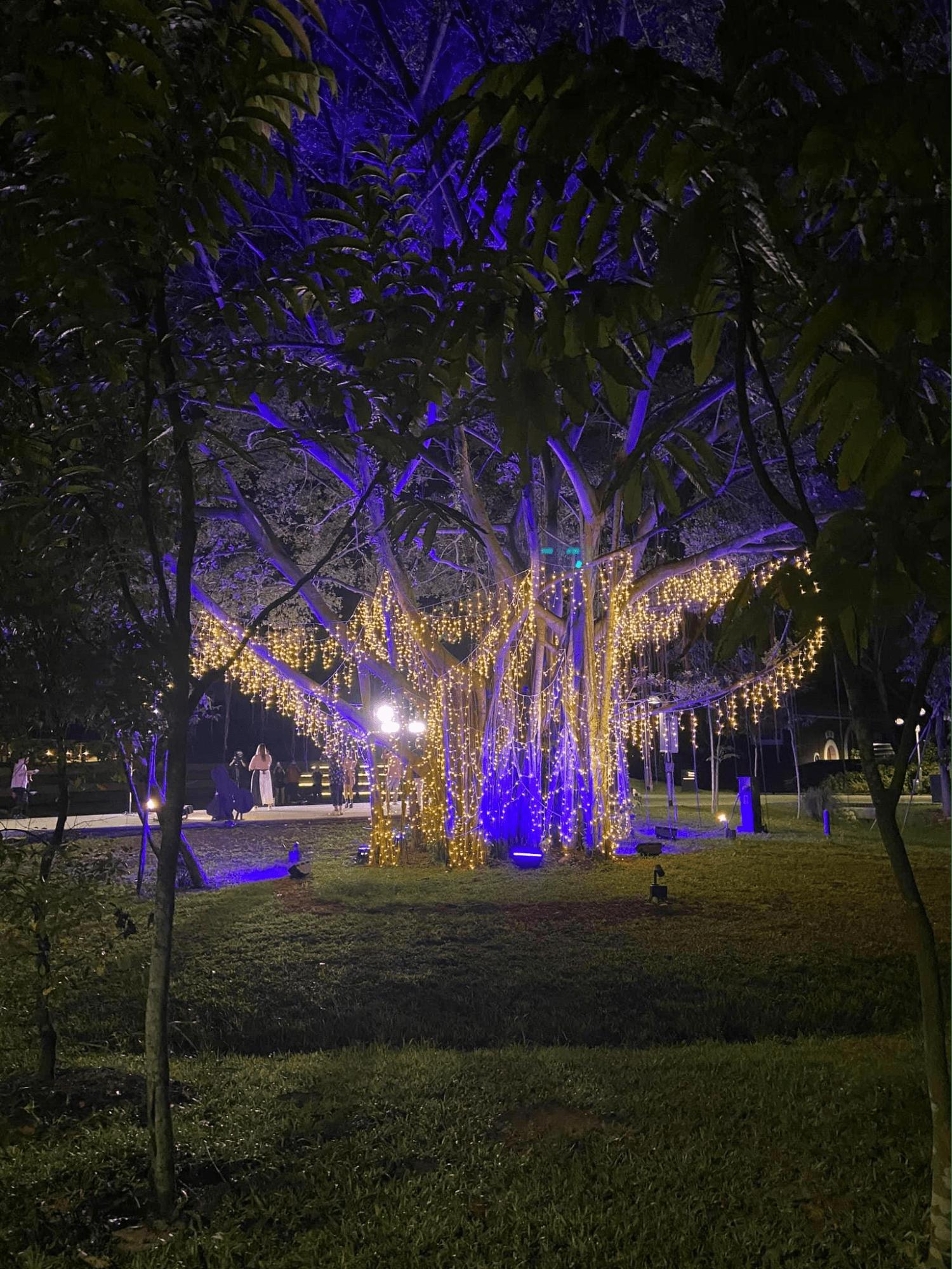 Mid-Autumn Festival - Jurong Lake Gardens