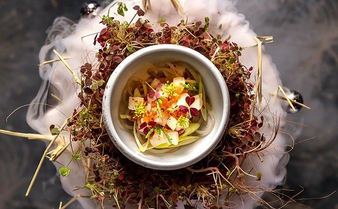 new cafes and restaurants september - Aqua Gastronomy