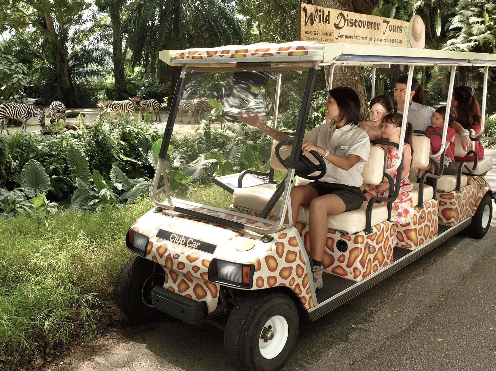 Free guided buggy tour