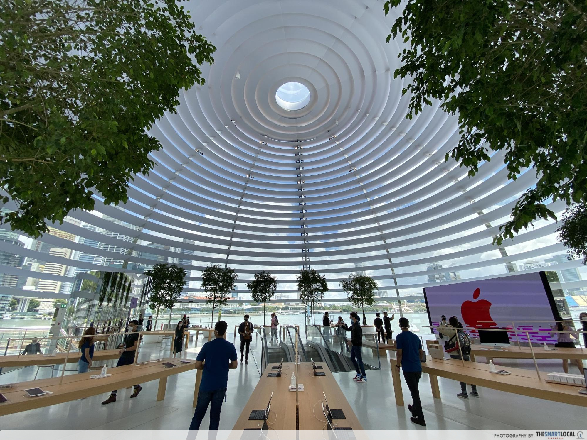 apple store marina bay sands - the interior of the glass dome with oculus