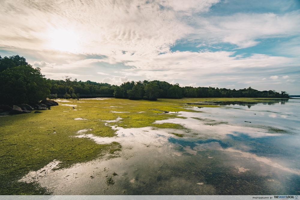 Pulau Ubin - Europe things to do in Singapore