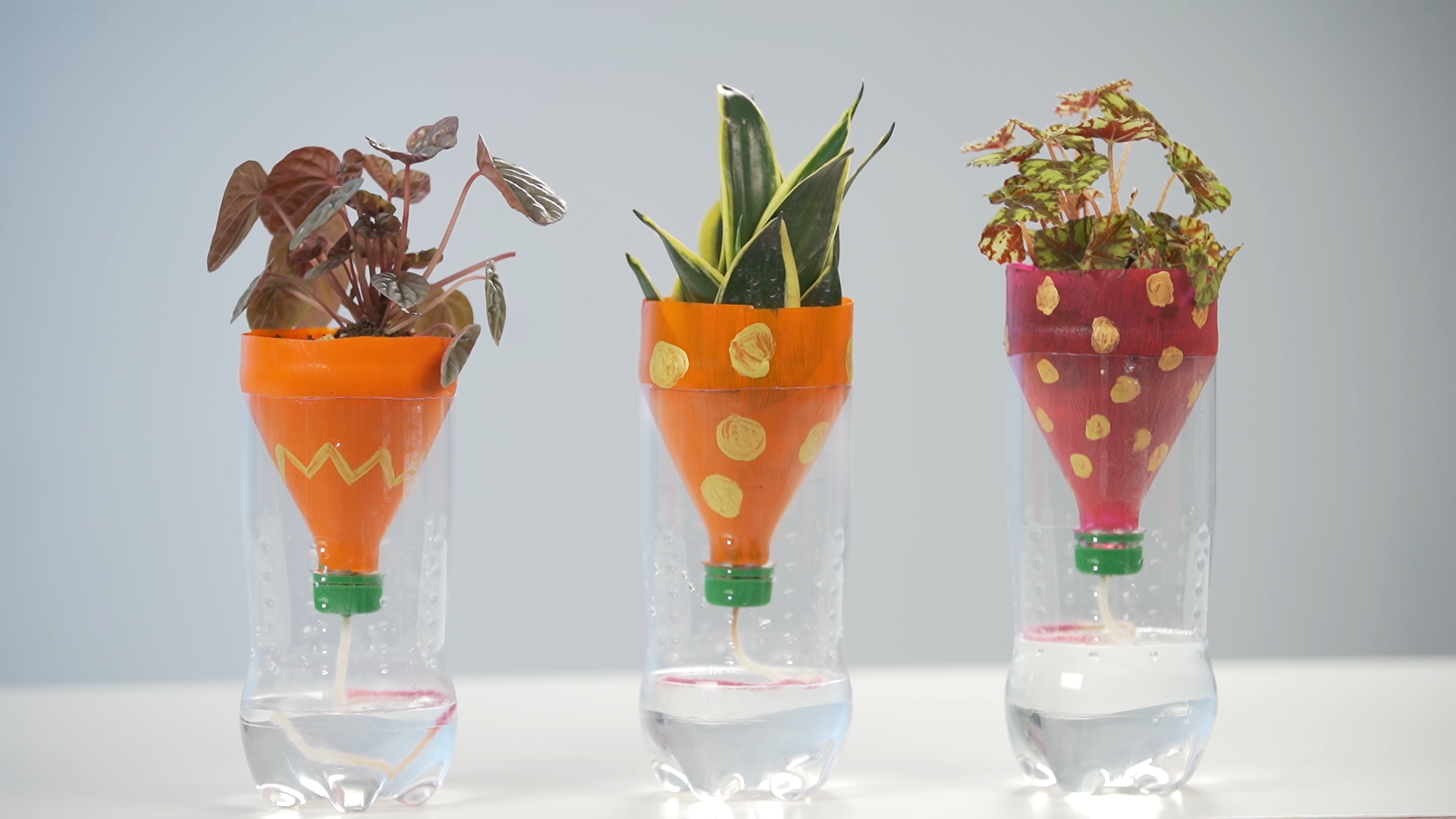 Self-watering planter workshop with used plastic bottles at Clean and Green Singapore 2020