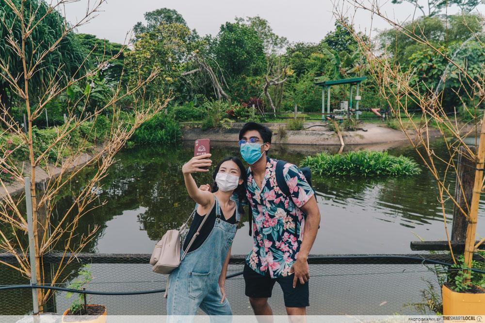 bollywood veggies, countryside getaway in singapore