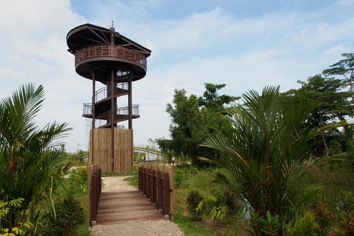raptor tower