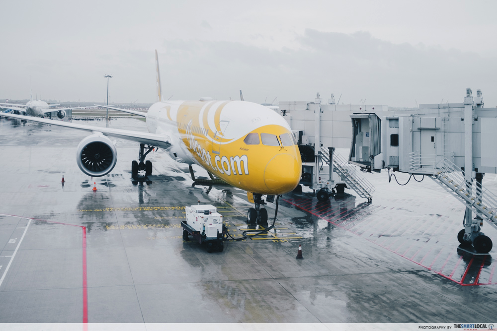 scoot inflight portal - scoot plane at gate in airport