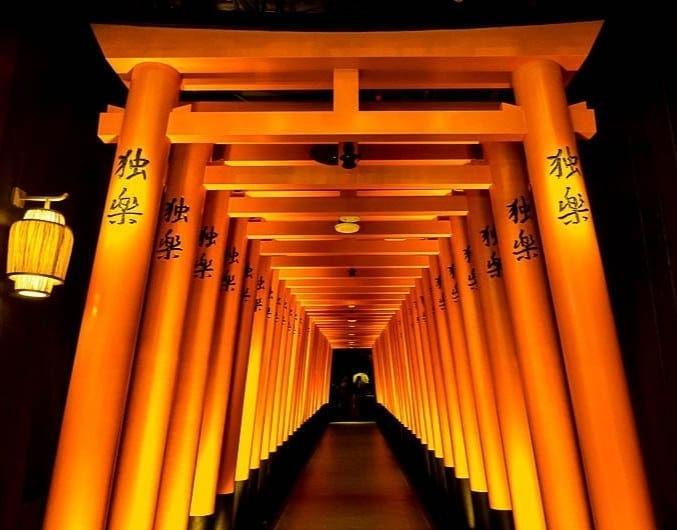 torii gates at koma