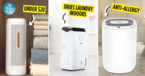 Best Dehumidifiers in Singapore Guide