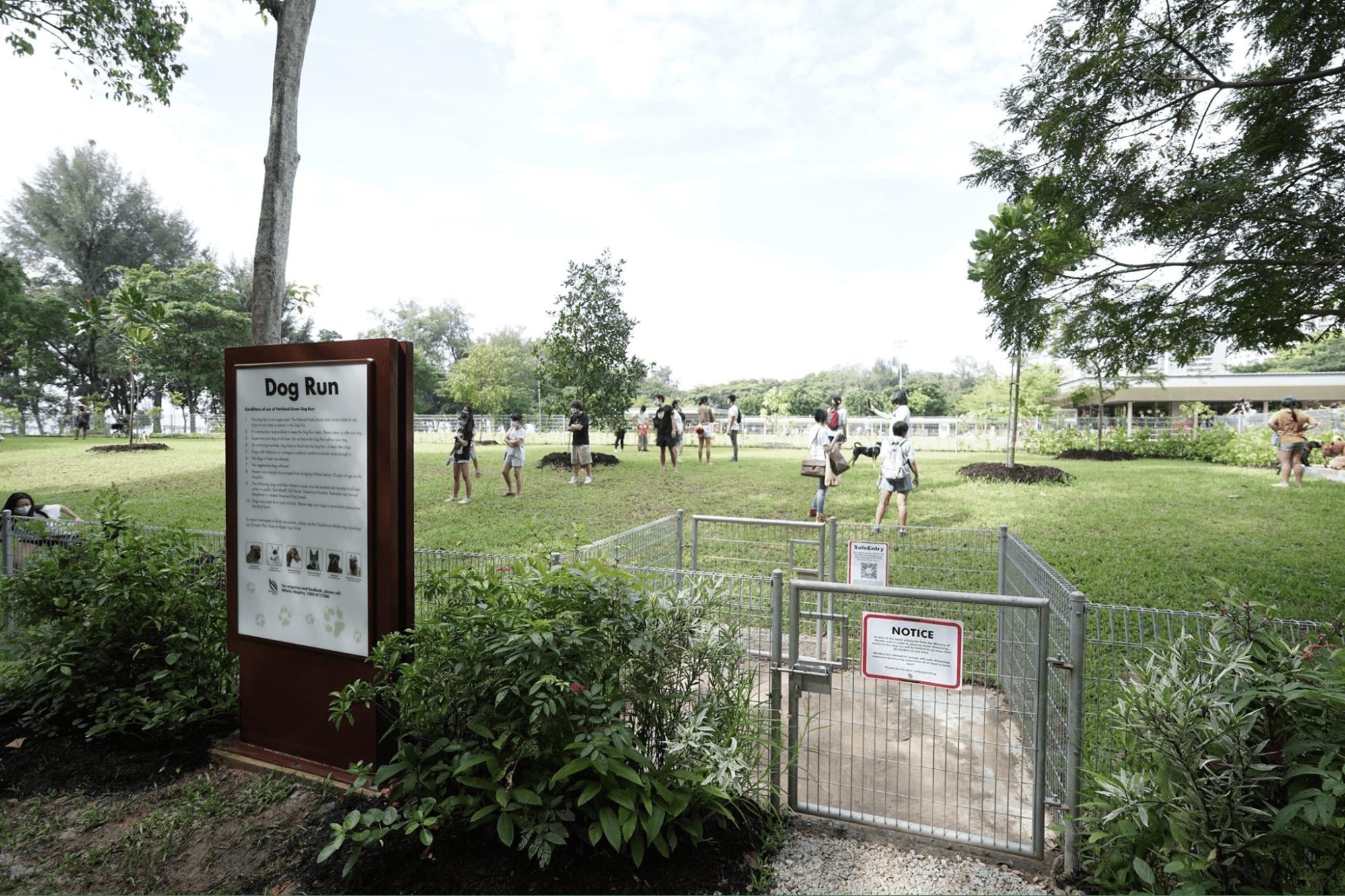 East Coast Park Dog Run