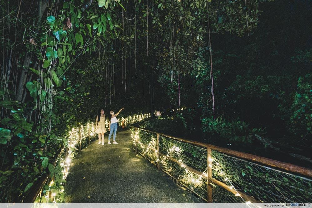 Night Safari Gharial Bridge