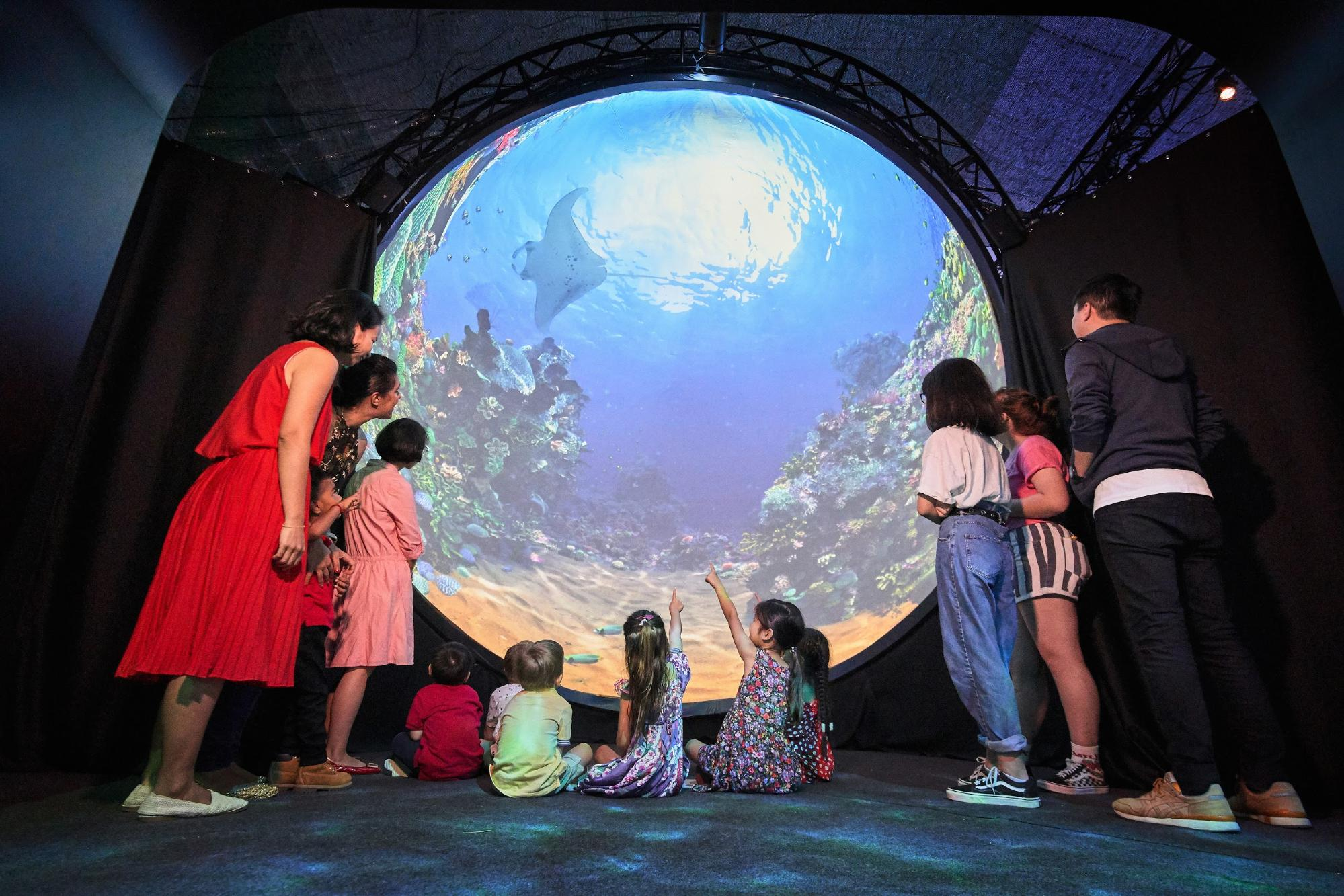 submarine dome projection at living worlds exhibition, things to do december 2020
