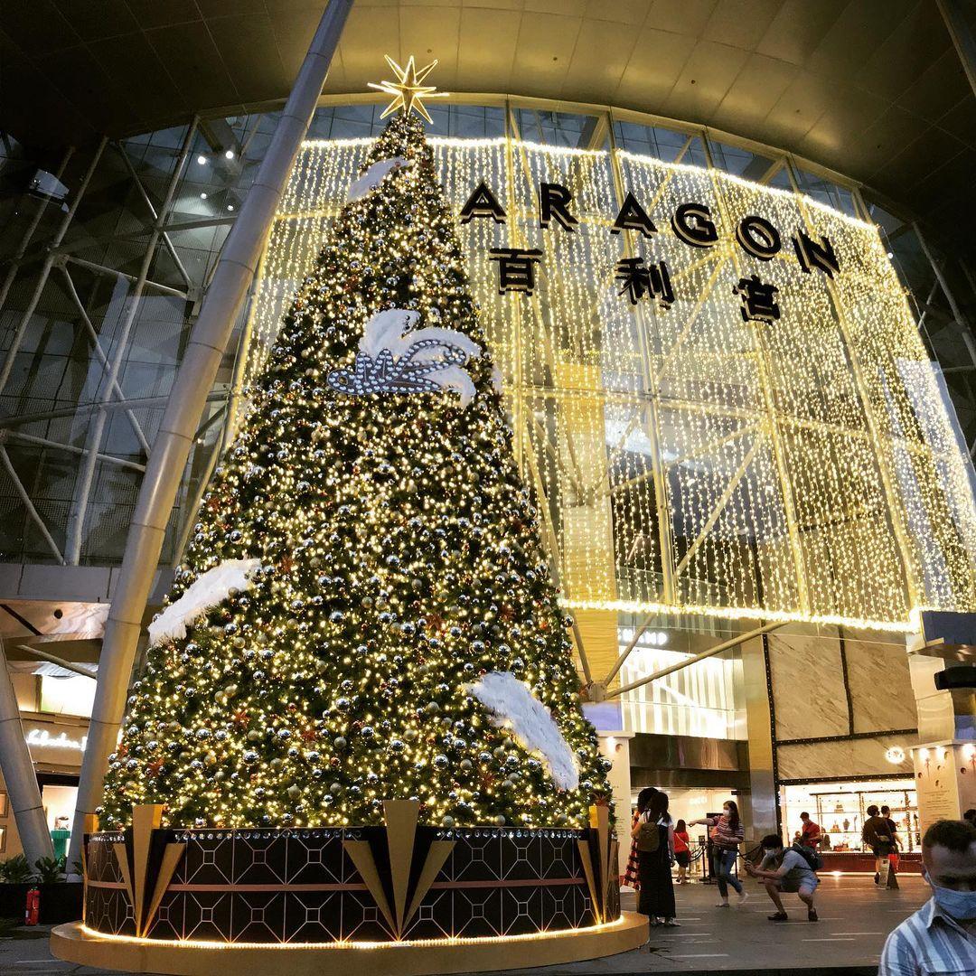 christmas 2020 - paragon christmas tree