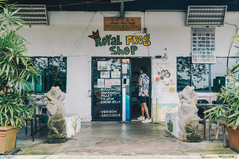 royal frog shop, jurong frog farm