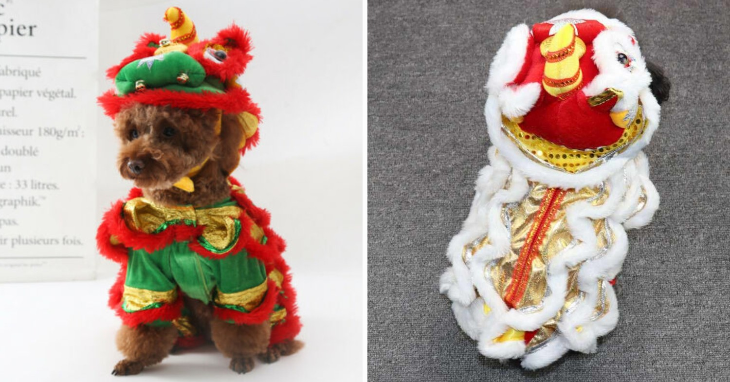 Chinese New Year Dog outfits - lion dance