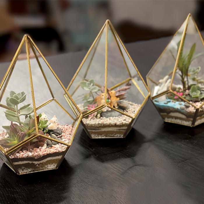 terrarium workshops