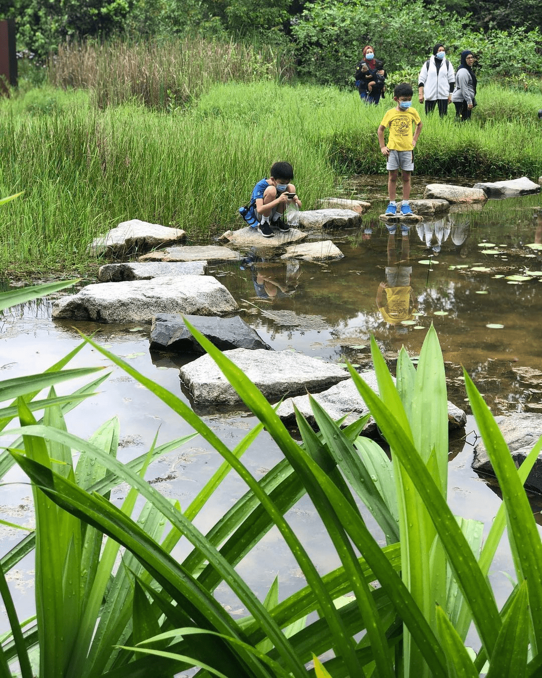 Image of boys inspecting a pond