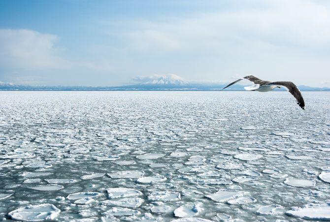abashiri drift ice or ryuhyo