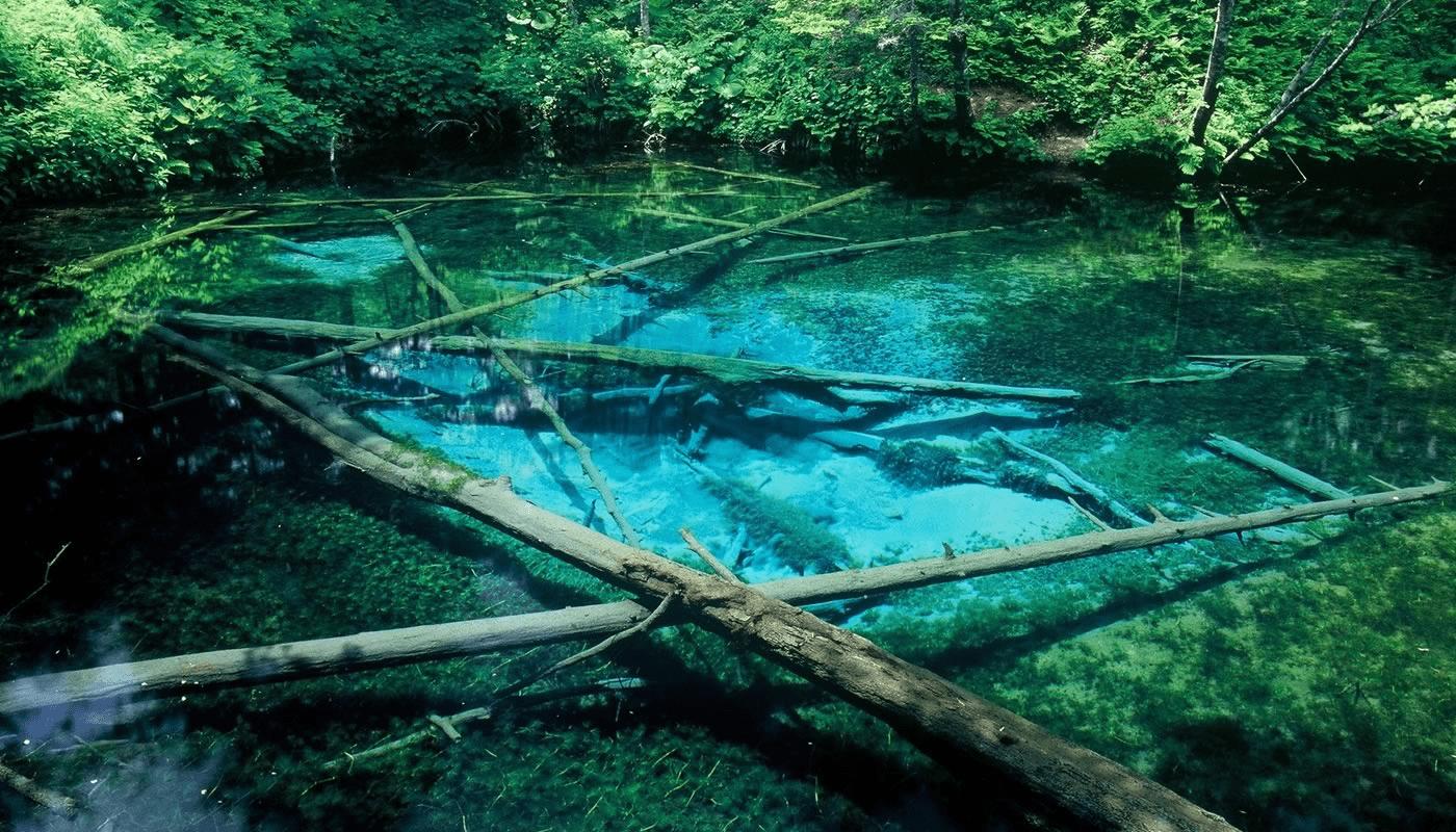 the kami-no-koike pond