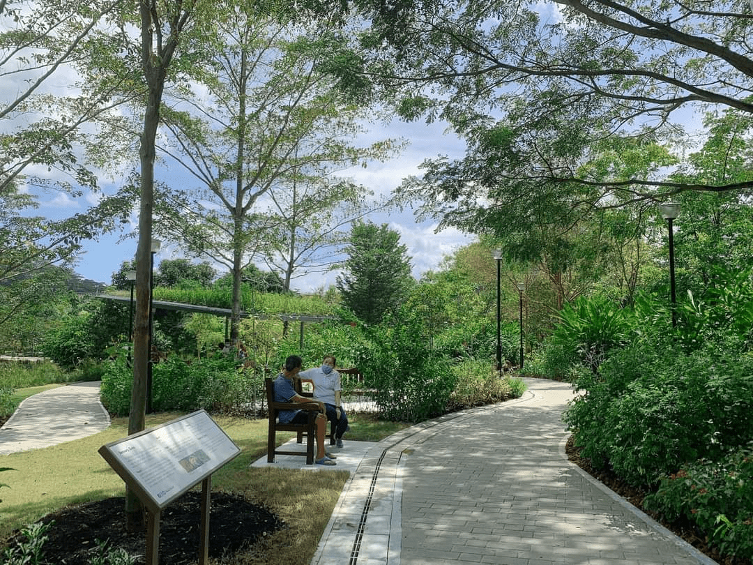 Therapeutic Park in Punggol Waterway Park-min