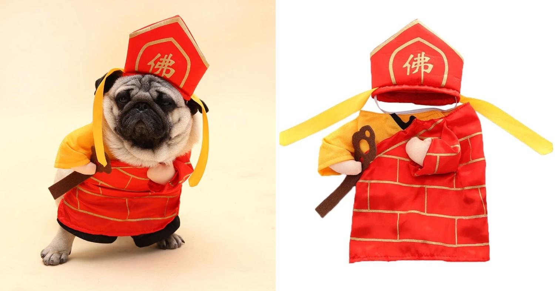 CNY Tang Sanzang dog costume