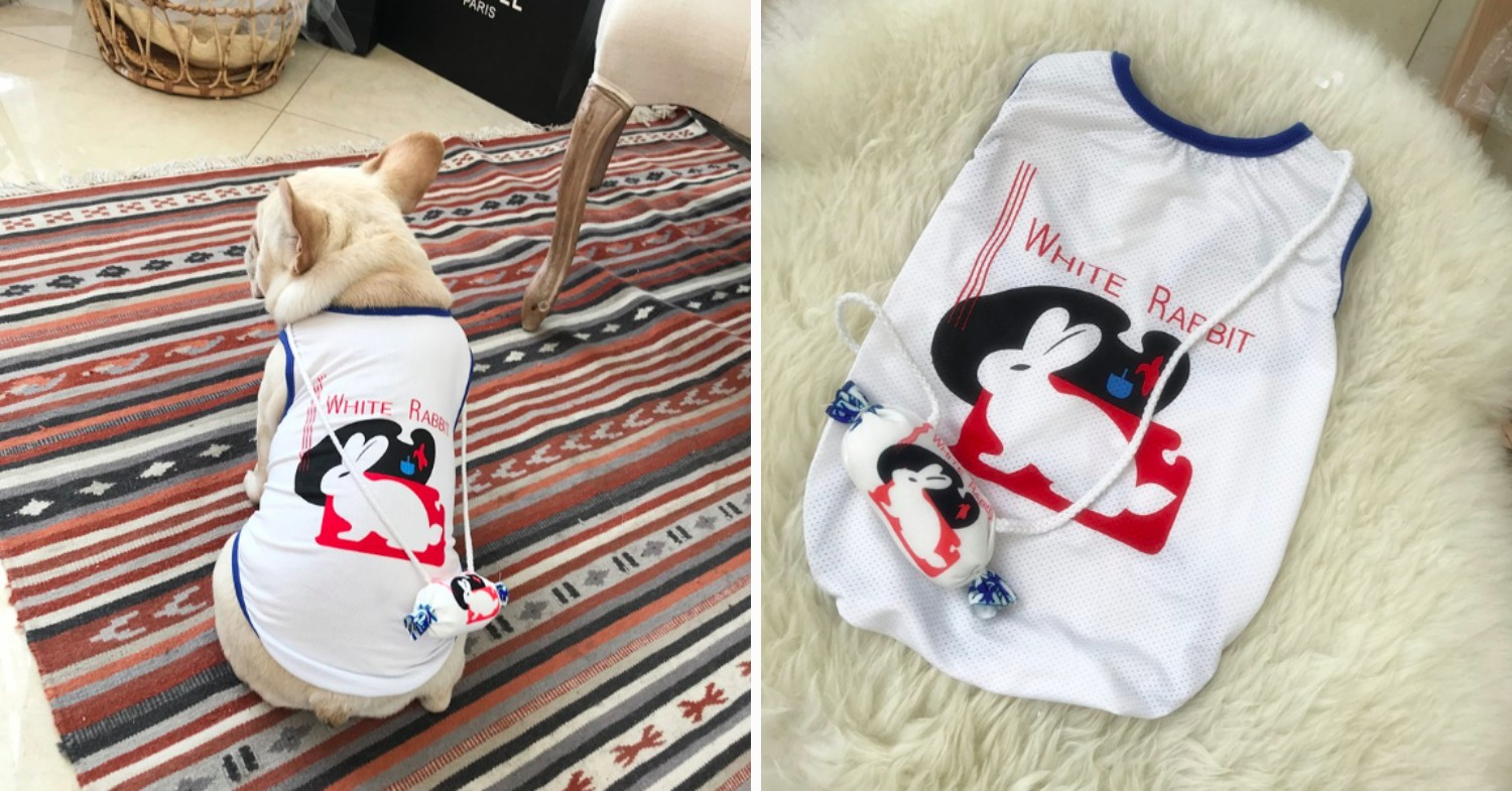 white rabbit sweet dog outfit
