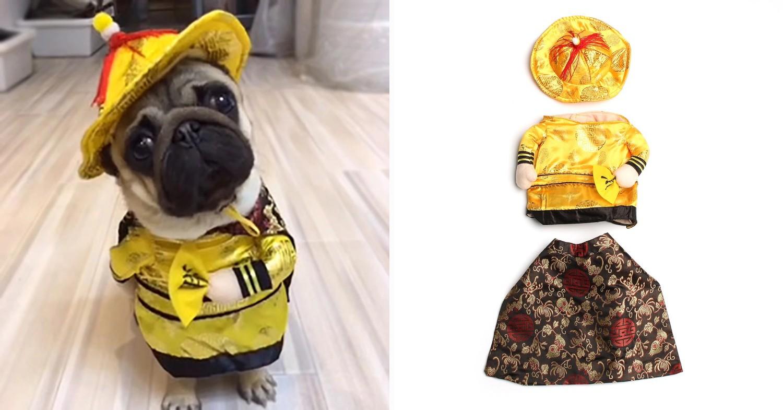 CNY emperor dog costume