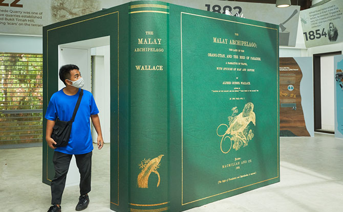 The Malay Archipelago display