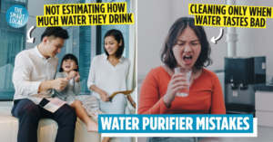 wells water purifier singapore cover