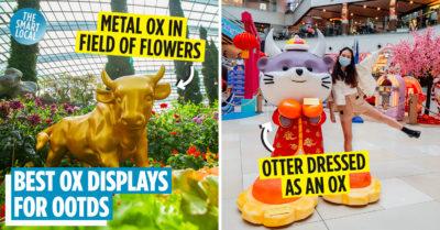 ox displays