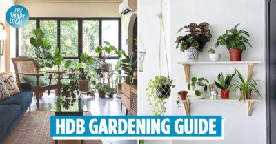 HDB Gardening Guide