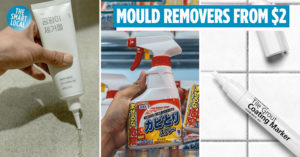 Mould Removers in Singapore
