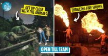 Night Safari: The World's First Night Zoo, With Free Guided Tram Rides & Hourly Shows