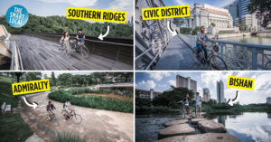 Scenic Cycling Trails in Singapore