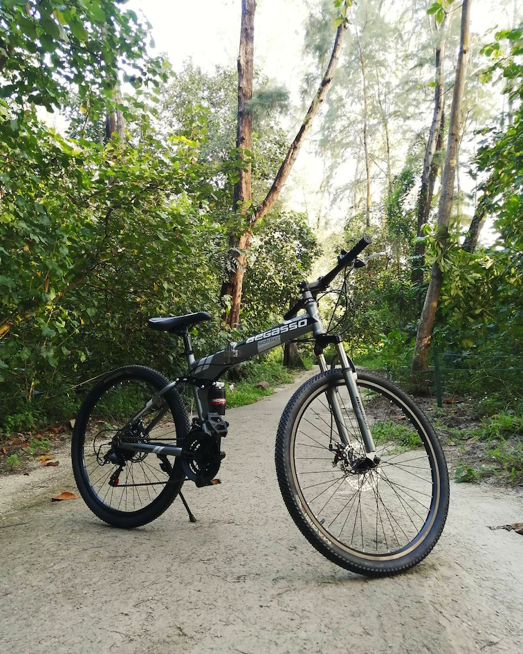 begasso full-sized mountain bike - best foldable bicycles in singapore