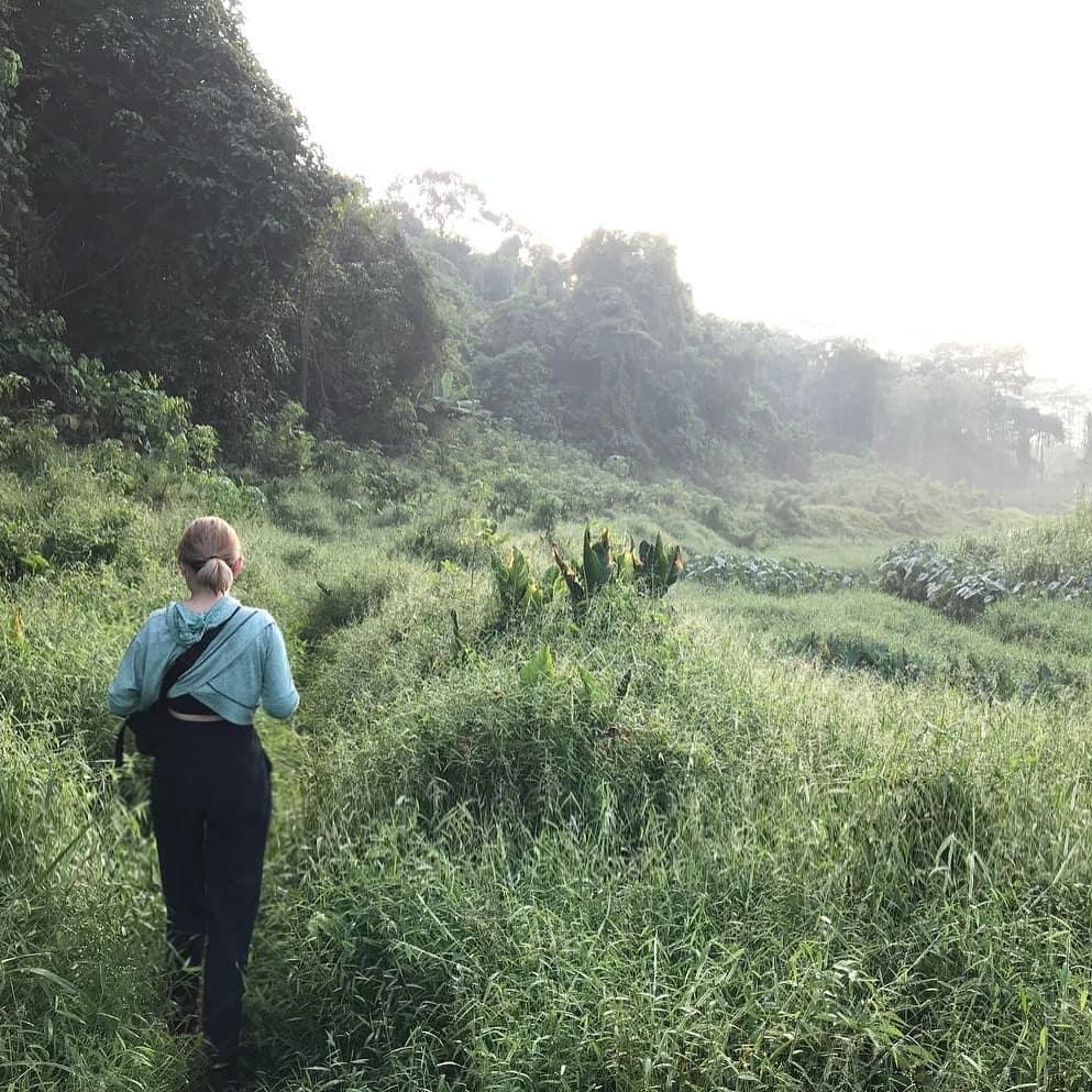 green corridor - Clementi Forest