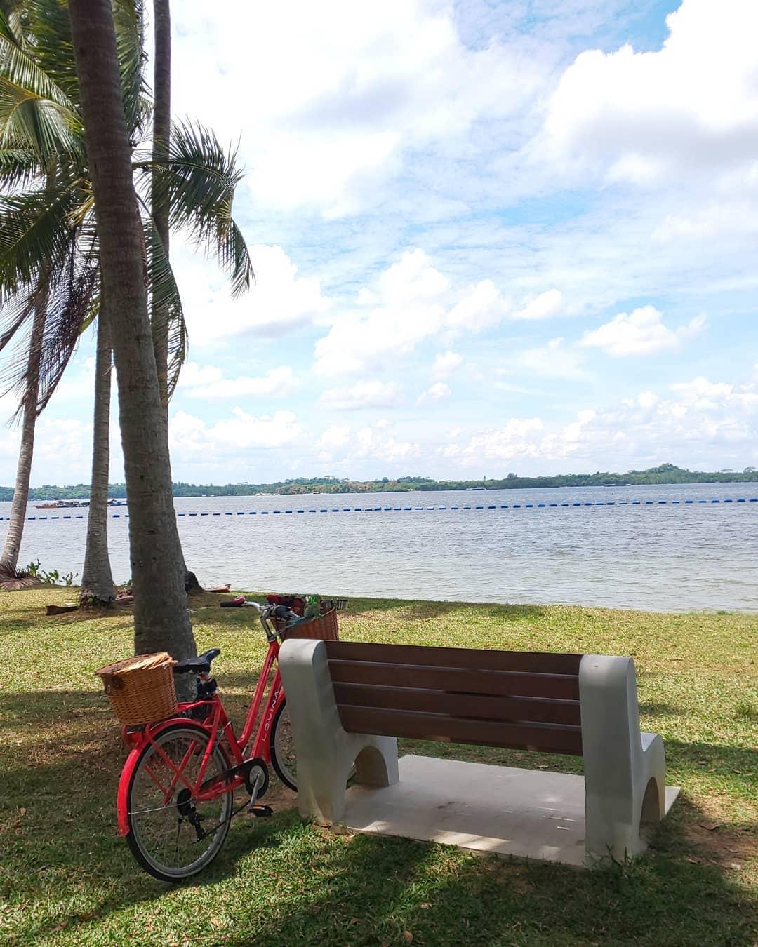 pasir ris park - bike rental