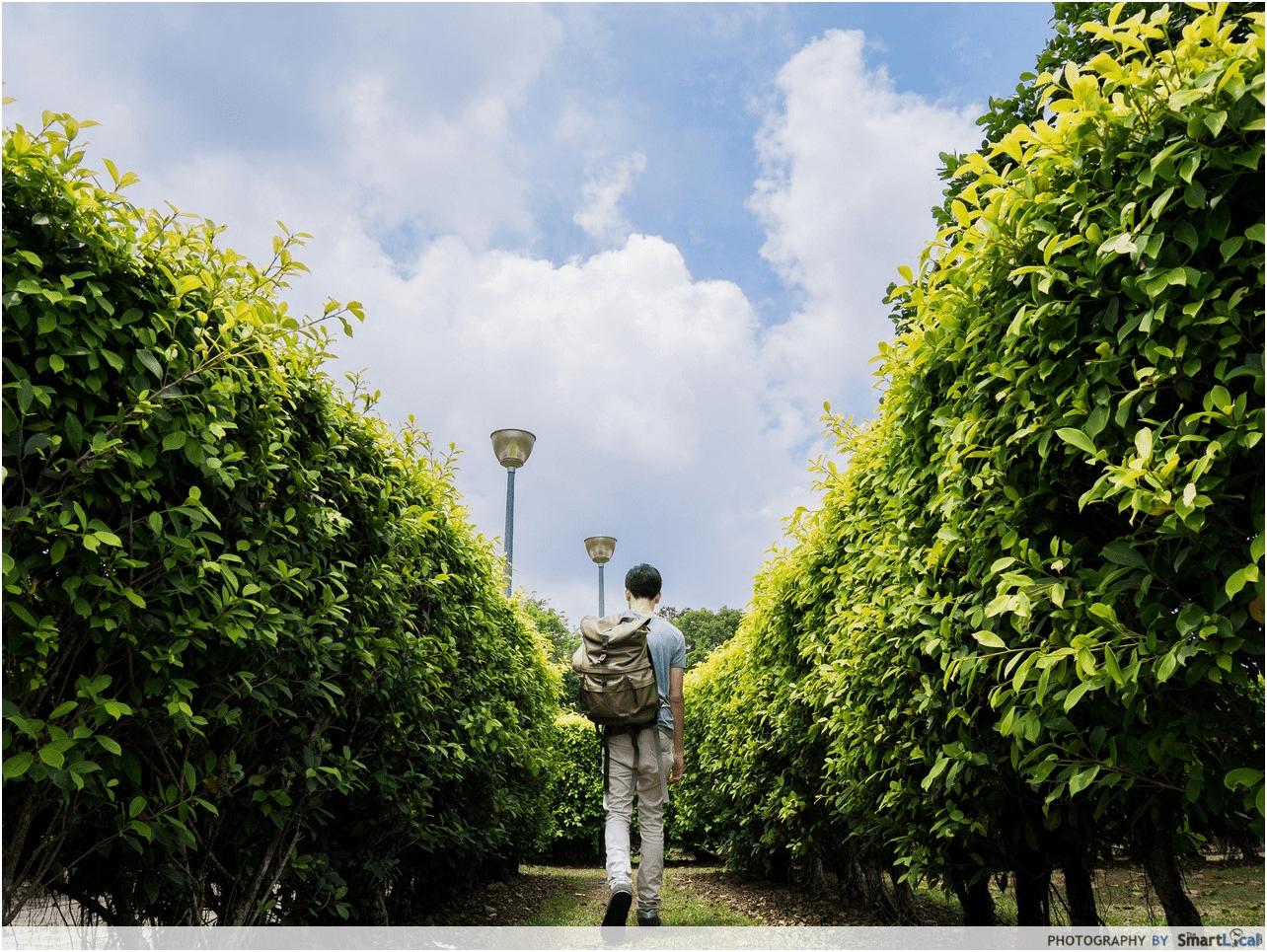 pasir ris park - Maze Garden