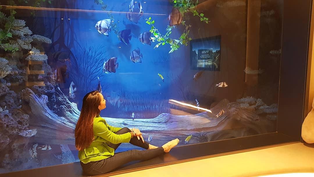 underwater hotels - Shimao Wonderland, Shanghai