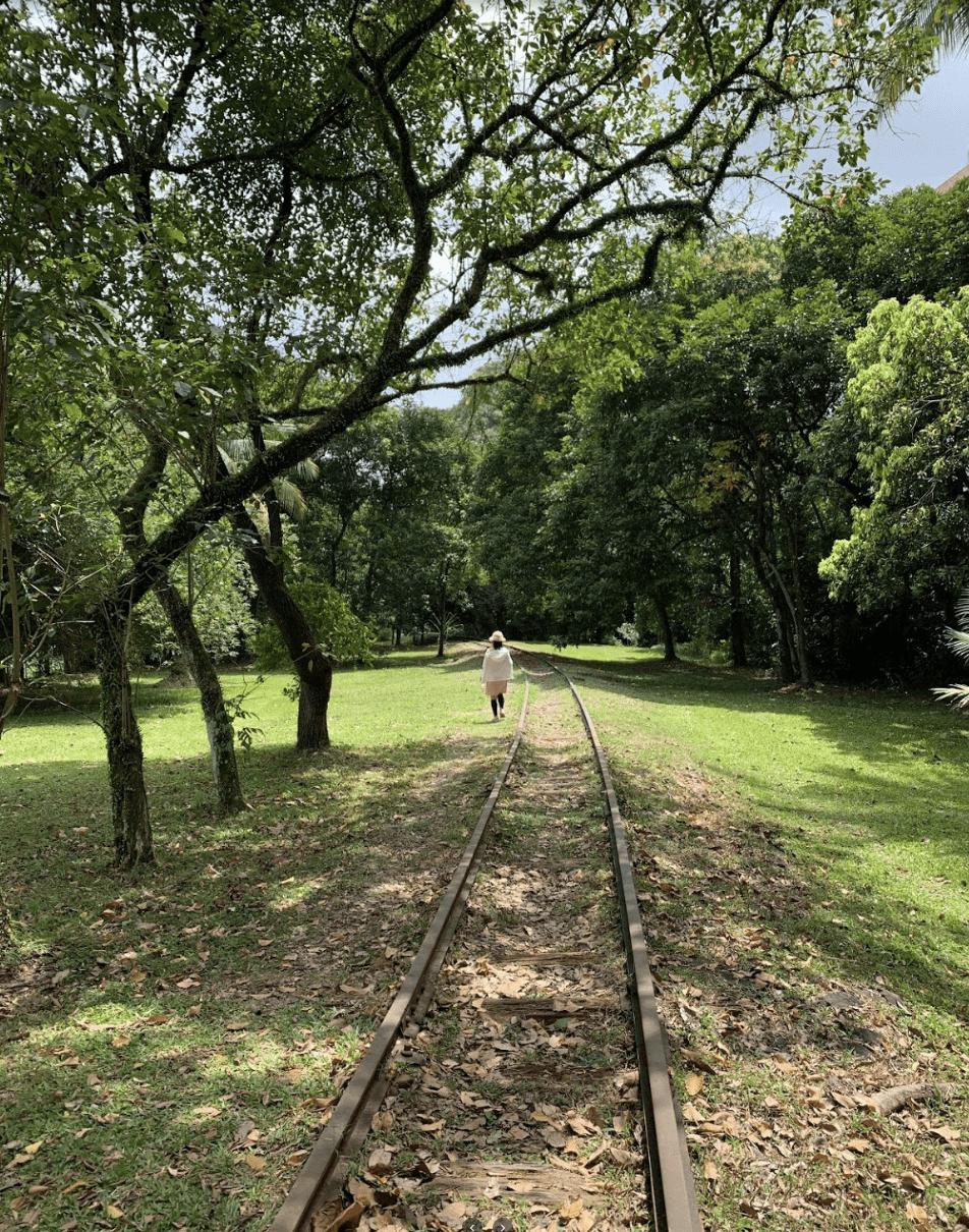 Jurong railway line - sunset way railway tracks