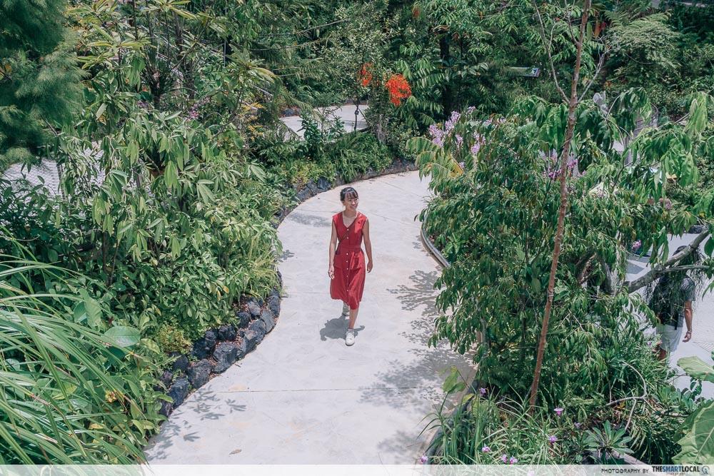 Tropical Montane Orchidetum - Secret Ravine