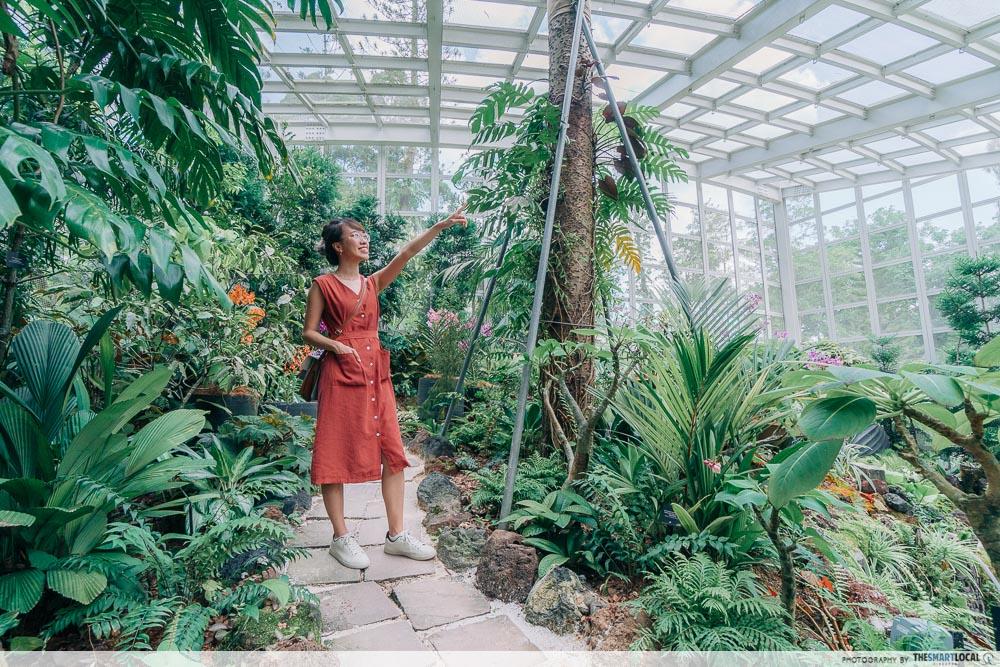 Singapore botanic gardens - Tan Hoon Siang Mist House