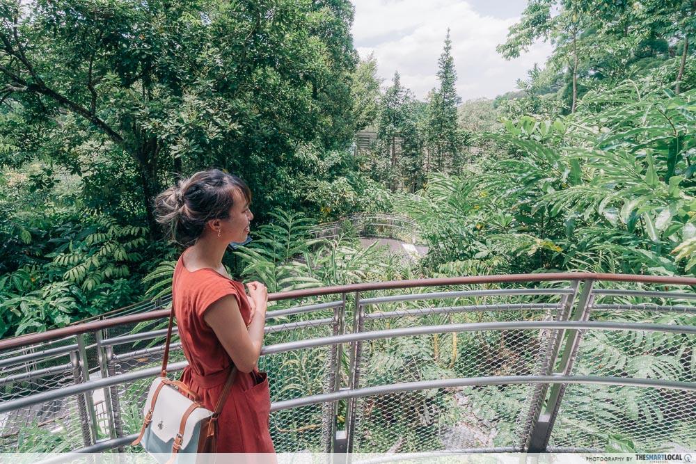 Tropical Montane Orchidetum - Lowland Habitat Trail