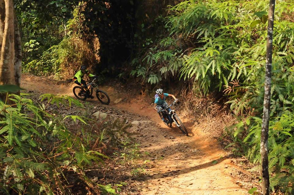 cycling routes singapore - chestnut nature park