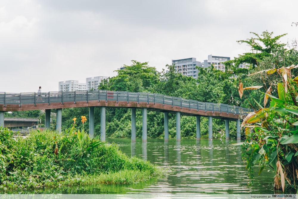 Floating Wetlands - things to do in Sengkang