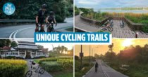 7 Lesser-Known Cycling Routes In Singapore To Bike At Instead Of Park Connectors, Sorted By Difficulty