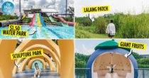 10 Things To Do In Sengkang - IG-Worthy Wetlands, Free TCM Clinic & Lakeside Dining