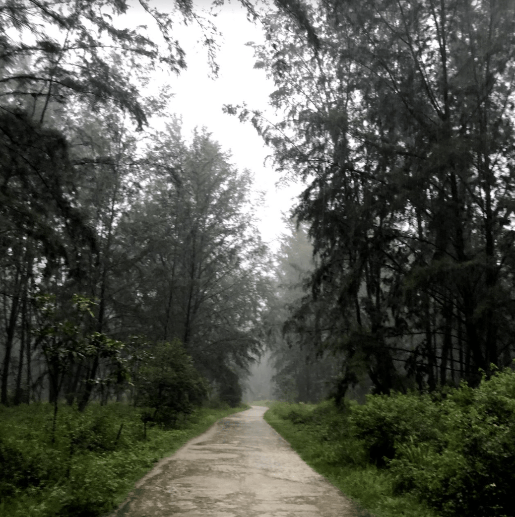 150km singapore walking trail - coney island