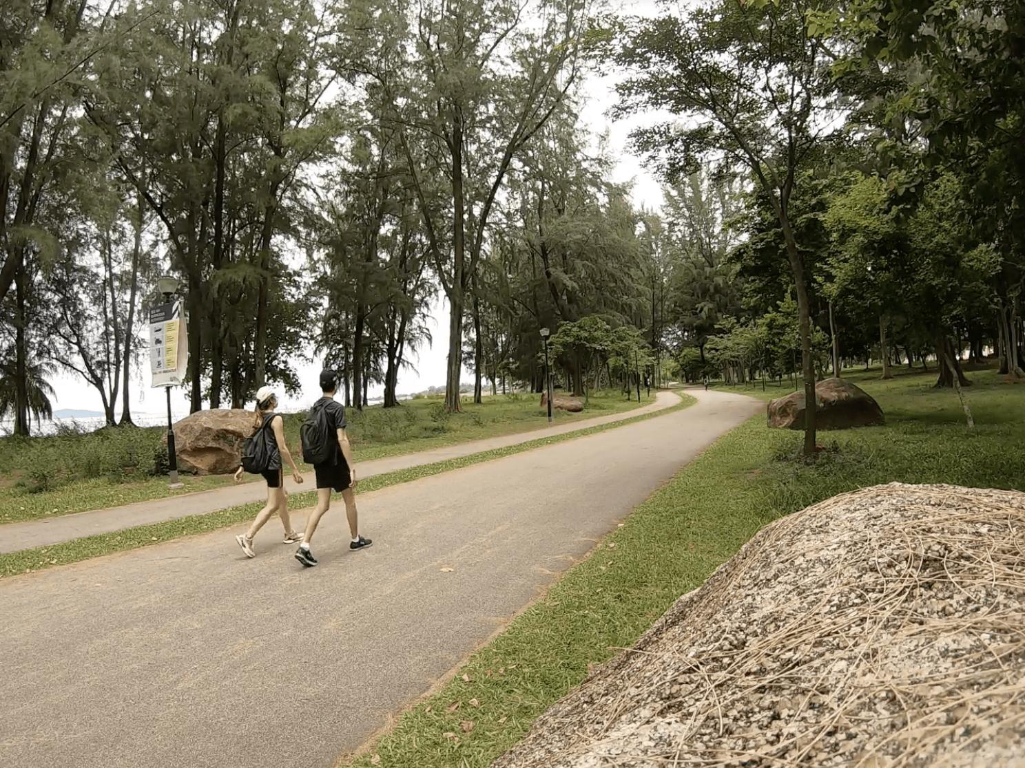 150km singapore walking trail - lorong halus