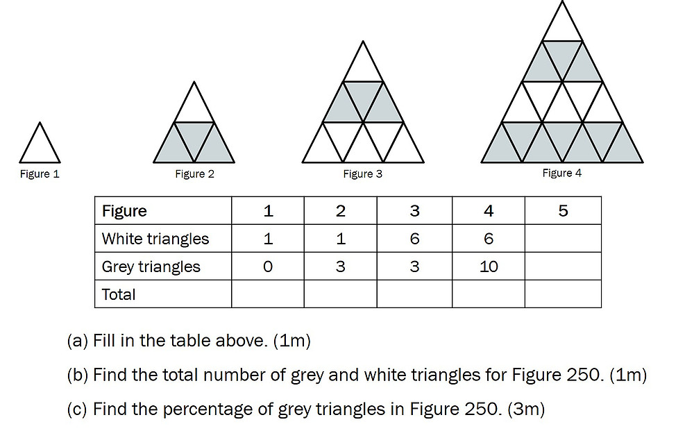 2019 psle maths paper in singapore