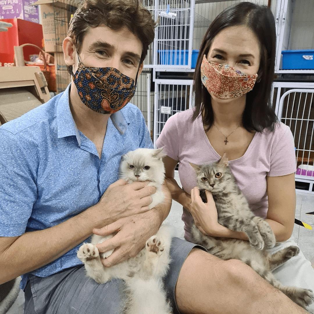 Kitten Sanctuary - Adopt A Cat