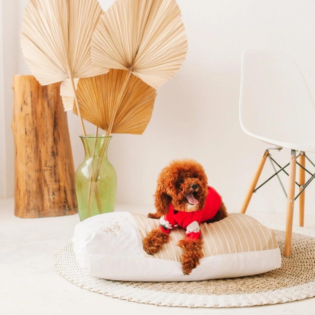 DreamCastle cooling dog bed